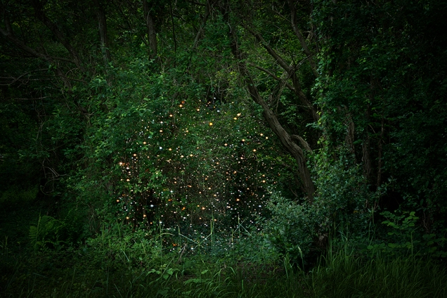 Ellie Davies Stars-2