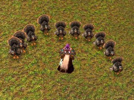 WoW Druid Turkey Worship