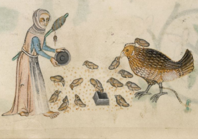 British Library Add MS 42130 f166v Feeding Chickens