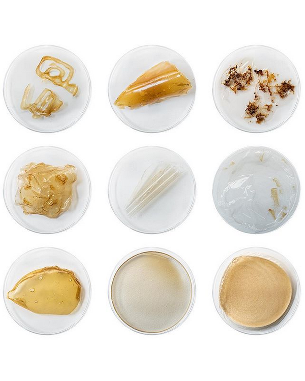 Instagram Shellworks Variety of Material Properties
