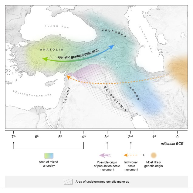 MHAAM Genetic Gradient 6500 BCE